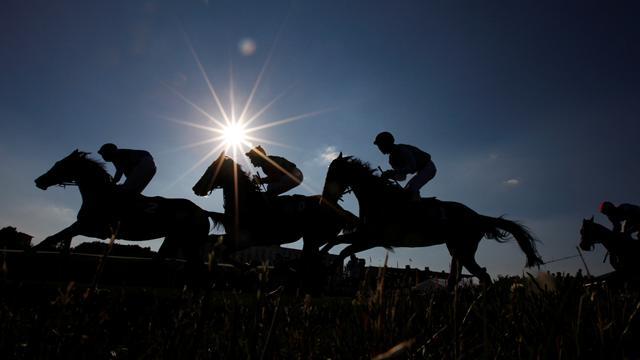 Female jockey dies after fall in trotting race