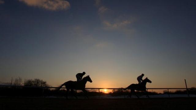 Australian Female Jockey Dies After Fall Horse Racing