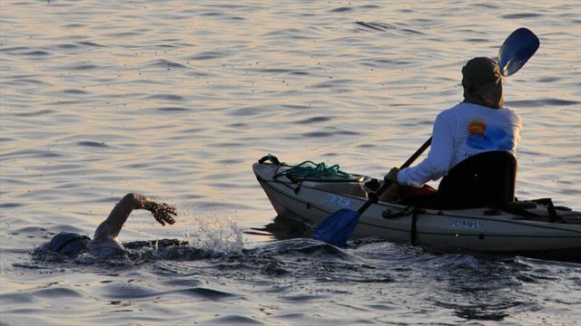 Marathon swimmer fails to complete Cuba-US journey