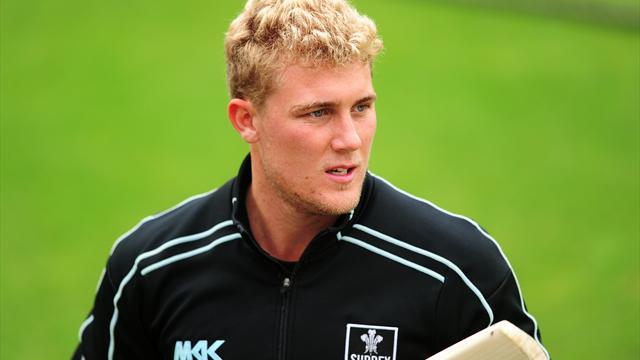 Hamilton-Brown gives up Surrey captaincy