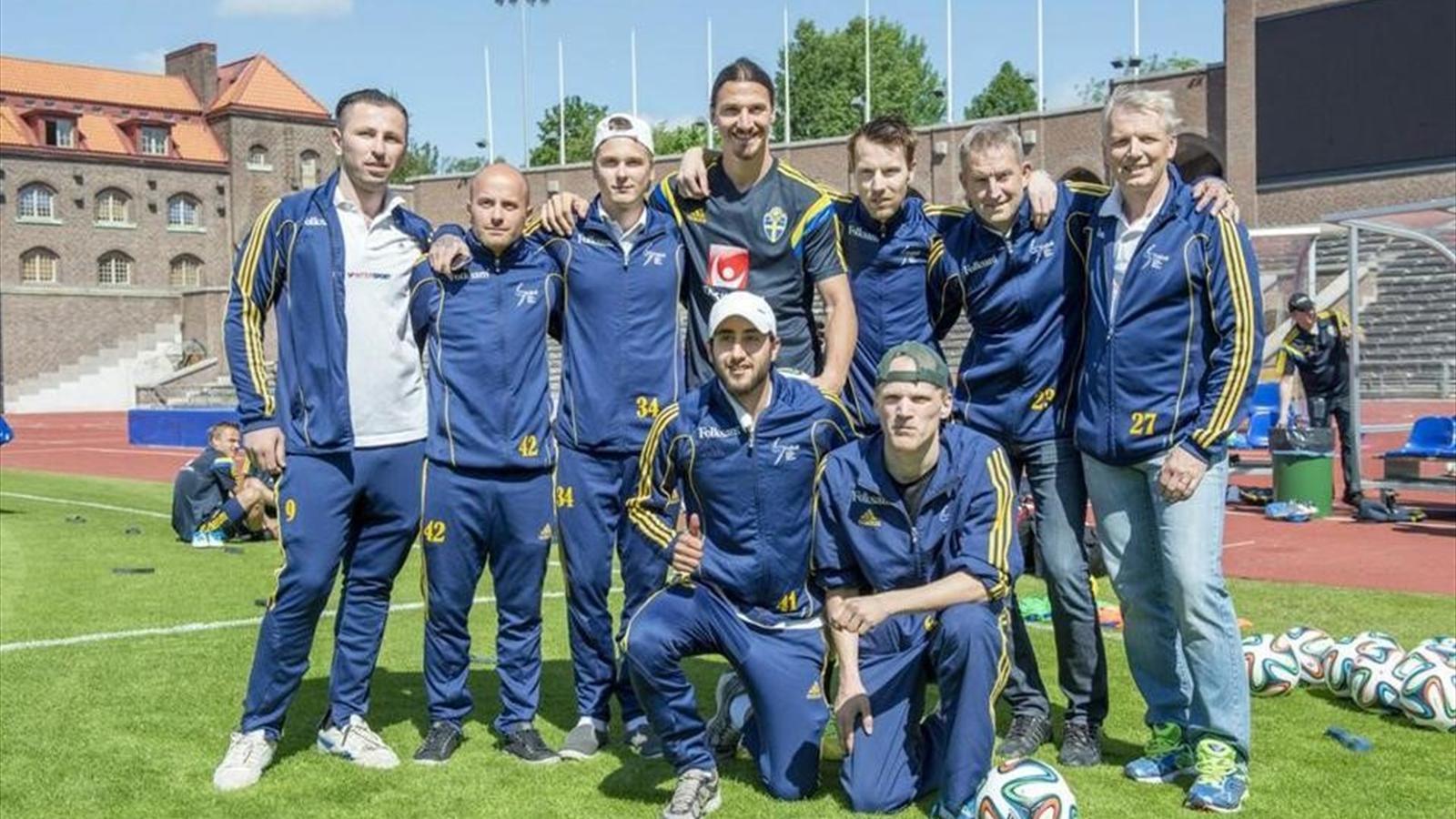 Чемпионат франции златан ибрагимович