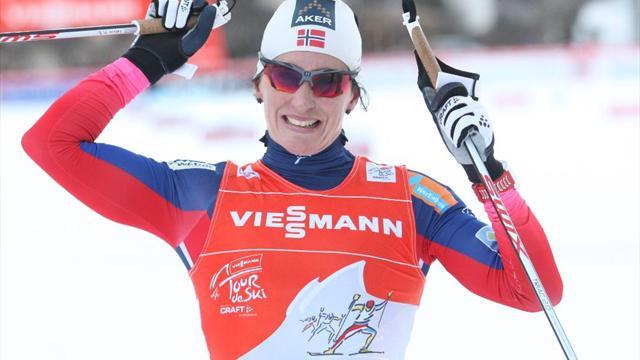 Лыжные виды спорта лыжная дюжина 12