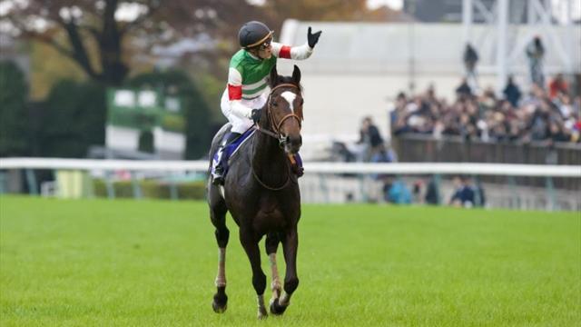 Les deux meilleurs chevaux du monde sont Japonais!