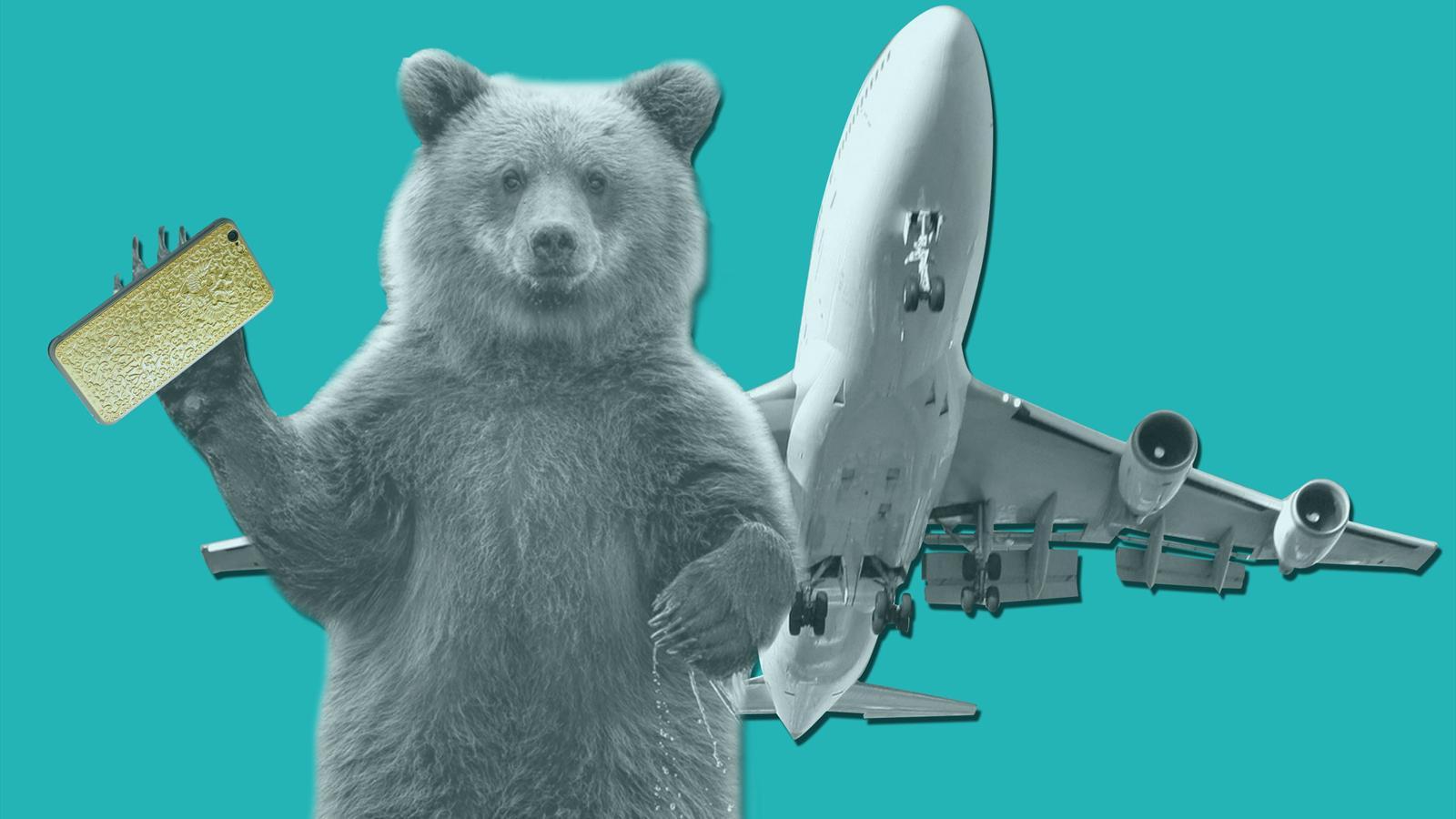 Медведь золотой iphone и чартер с евро