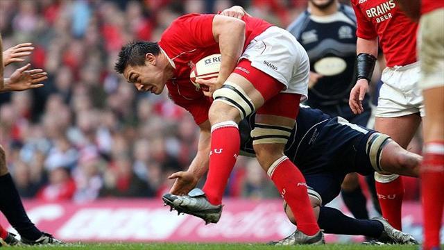 Ospreys sign Wales back-row Gareth Delve