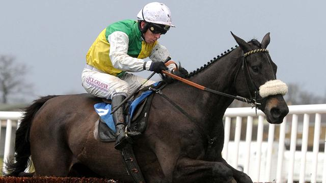 Former National winner Many Clouds dies after race