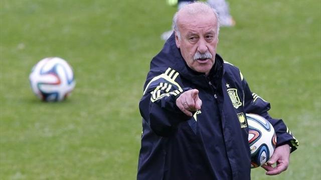 Motivos para la continuidad de Del Bosque tras la Eurocopa