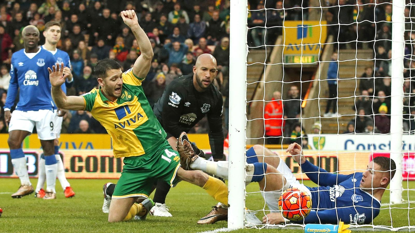 Wes Hoolahan squeezes in Norwich's equaliser against Everton