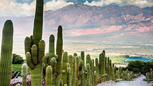 Dakar 2016 – Montagne aux sept couleurs, vin, canyon géant… 7 villes étapes d'exception en Argentine