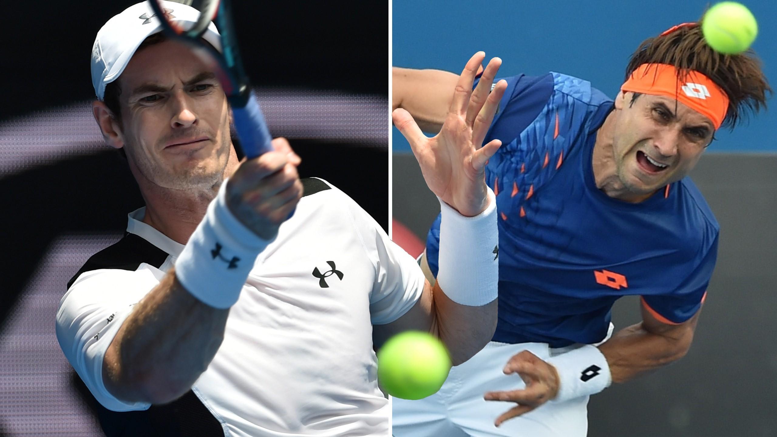 Andy Murray und David Ferrer