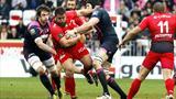 Toulon - Stade français (23-16) - Encore une fois, Toulon s'amuse à se faire peur