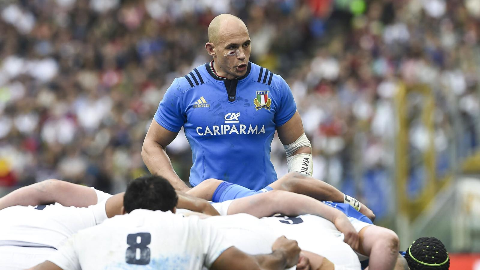 Sergio Parisse, le capitaine de l'Italie