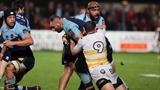 Vidéo - Pro D2 : Le résumé de Perpignan - Albi (18-13)