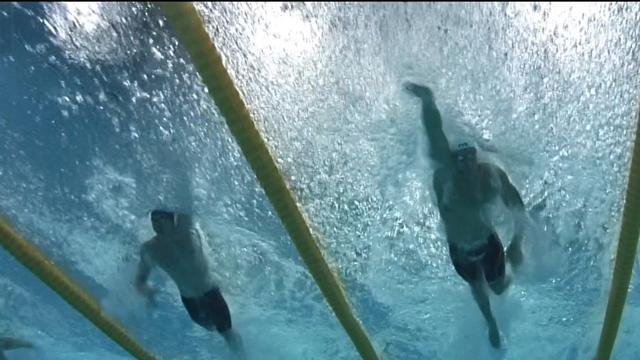 Manaudou a dompté Govorov : la finale du 50m en vidéo