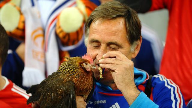 Le coq de Clément d'Antibes interdit de stade