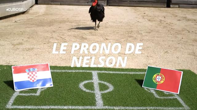 Nelson le calao avait vu juste avec la victoire du Portugal