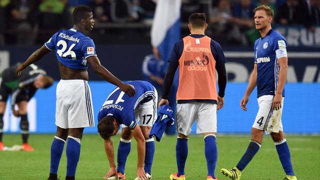 Fan-Blog: Schalke darf unsere Geduld nicht überstrapazieren!