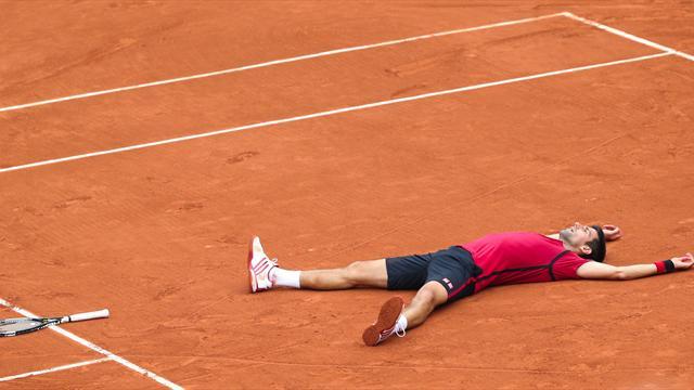 Bilan 2016 : Djokovic, six mois dans les étoiles avant le retour sur terre