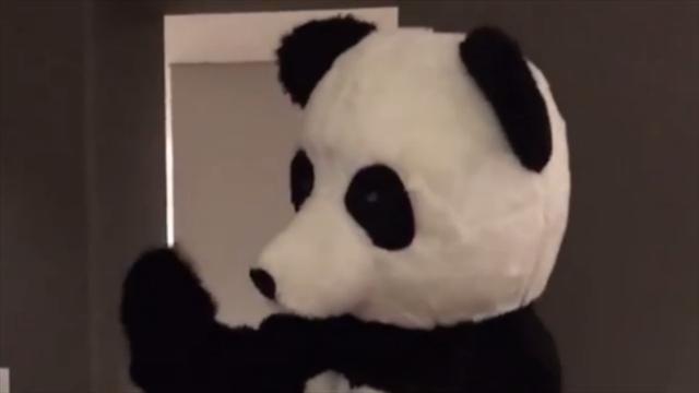 Déguisé en panda, Evra danse pour lutter contre le racisme