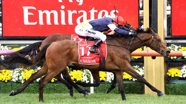 Almandin wins Melbourne Cup thriller