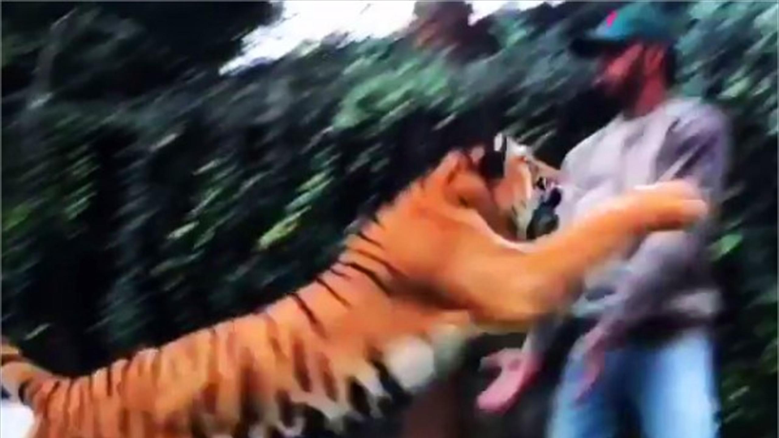 Yikes! Tiger leaps up at Lewis Hamilton… Spoiler Alert: He's okay (Instagram)