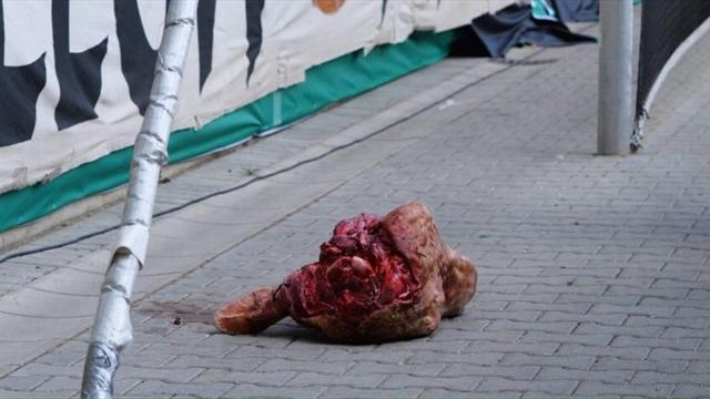 Дрезденский «Динамо» оштрафован заброшенную стрибун голову быка