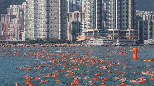 Nach Tod eines Schwimmers in Hongkong: FINA nimmt Hafenrennen ins Visier