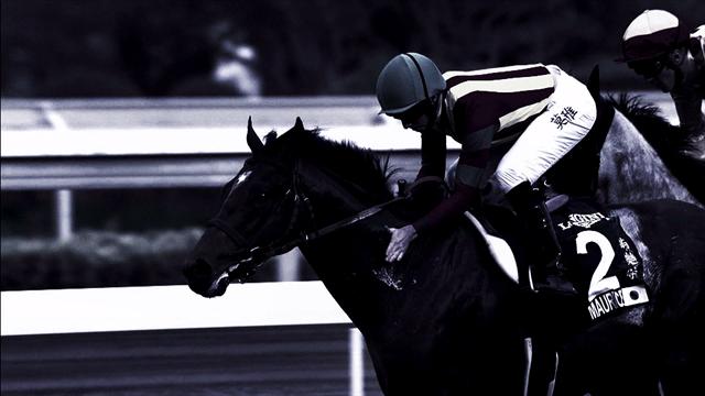 Longines Hong Kong Races : dimanche, vivez la course hippique la mieux dotée du circuit