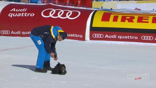 Câble de caméra cassé, télésiège bloqué : comment un avion a semé la confusion à St Moritz