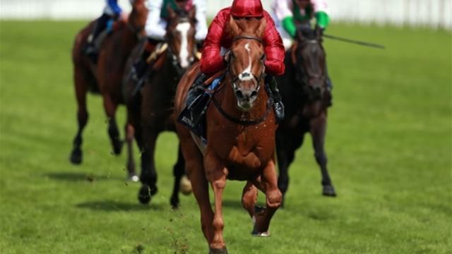Randwick: Winx triunfa en la Longines Queen Elizabeth's Stakes