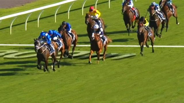 Horse Excellence: : Longines Queen Elisabeth stakes
