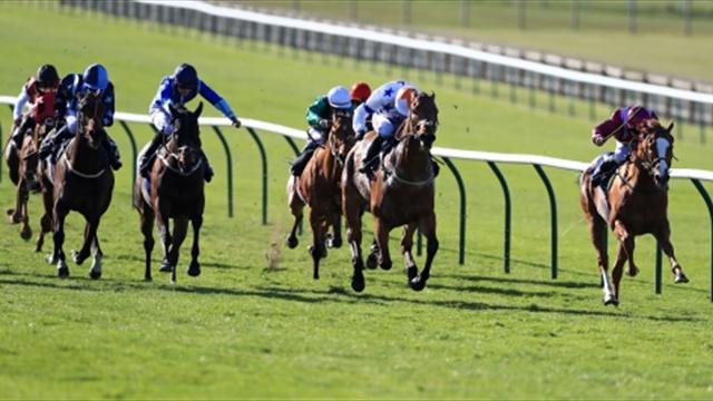 Gran domingo de carreras de caballos en Japón
