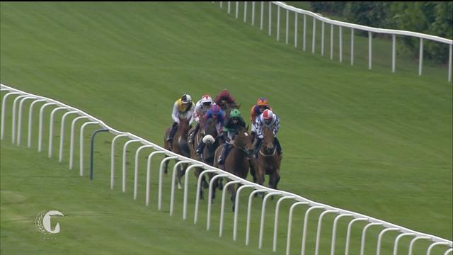Horse Excellence :  Sagaro Stakes (Horse Racing)