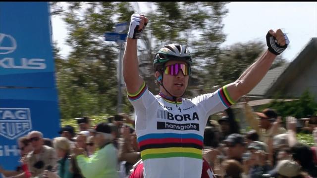 En puissance, Sagan a montré qui était le patron : l'arrivée de la 3e étape