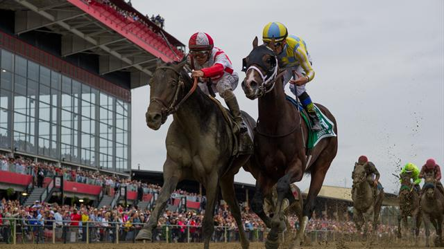 Preakness Stakes: Cloud Computing stuns field to triumph
