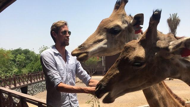 «Лето – время с семьей». Крауч выложил фотку с жирафами и идеально затроллил сам себя