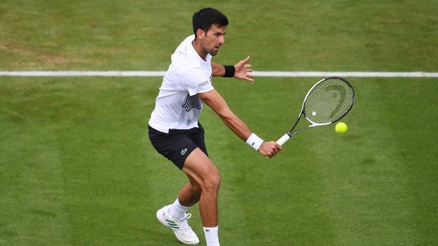 Sur le gazon d'Eastbourne, Djokovic reverdit