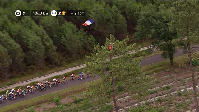 Мужик с флагом поприветствовал гонщиков «Тур де Франс» с вершины дерева