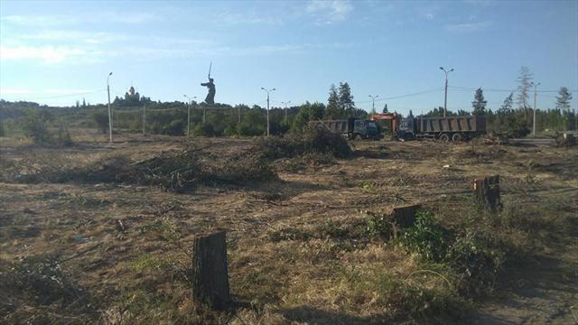 В Волгограде ради парковки к ЧМ-2018 вырубили деревья Парка сталинградских вдов