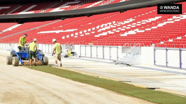 Así se coloca el césped del Wanda Metropolitano