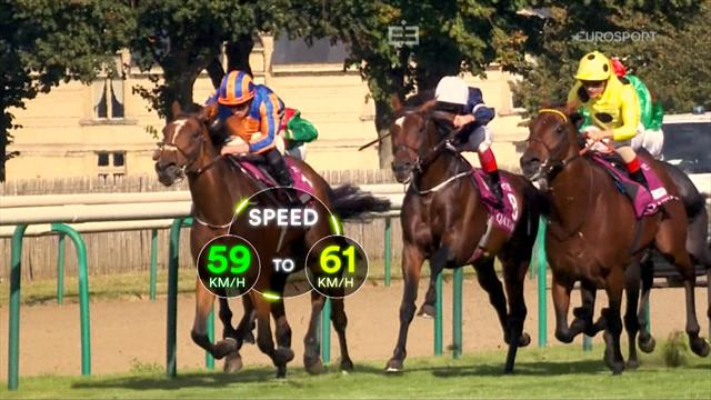 Sports Explainer: Mastering horse racing