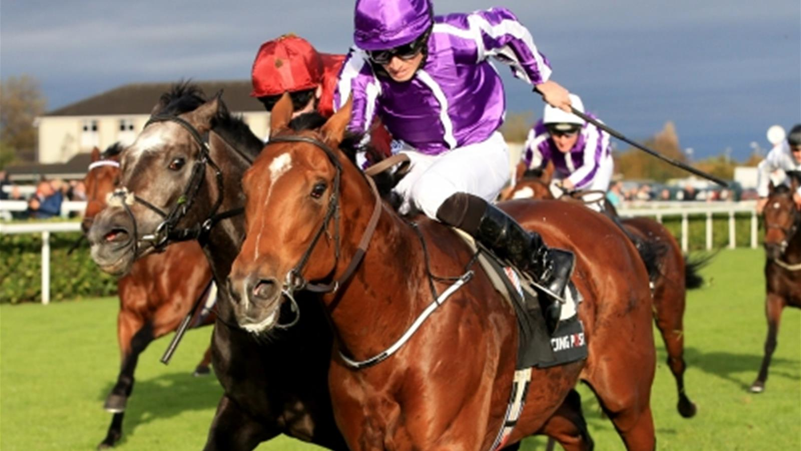 Saxon Warrior seals Group One winners record for Aidan O'Brien at Doncaster - Horse Racing ...