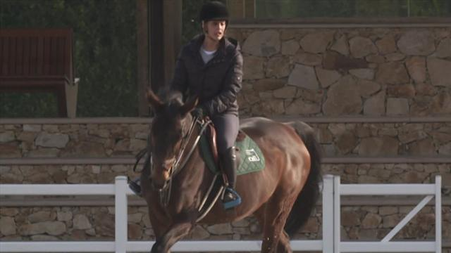 Horse excellence : report - behind the scene