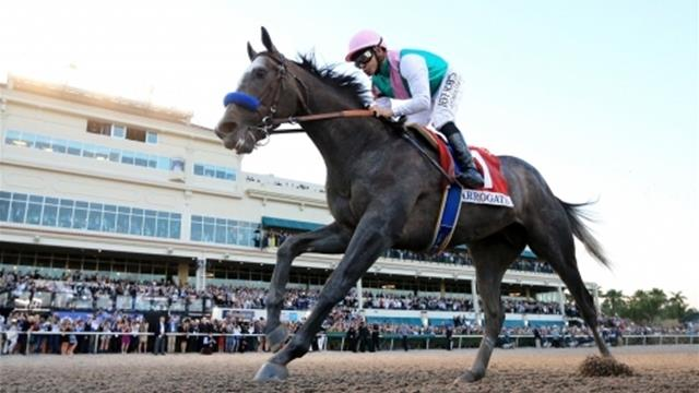 Arrogate crowned world's best racehorse