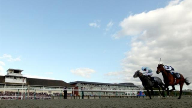 Master The World awarded Betway Winter Derby after Stewards' inquiry drama