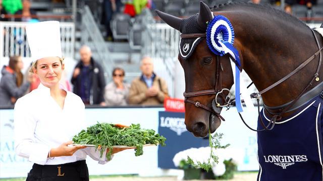 Здоровая гастрономия для спортивных лошадей