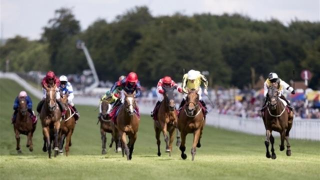 Chinesische und internationale Jockeys bereit für Chengdu