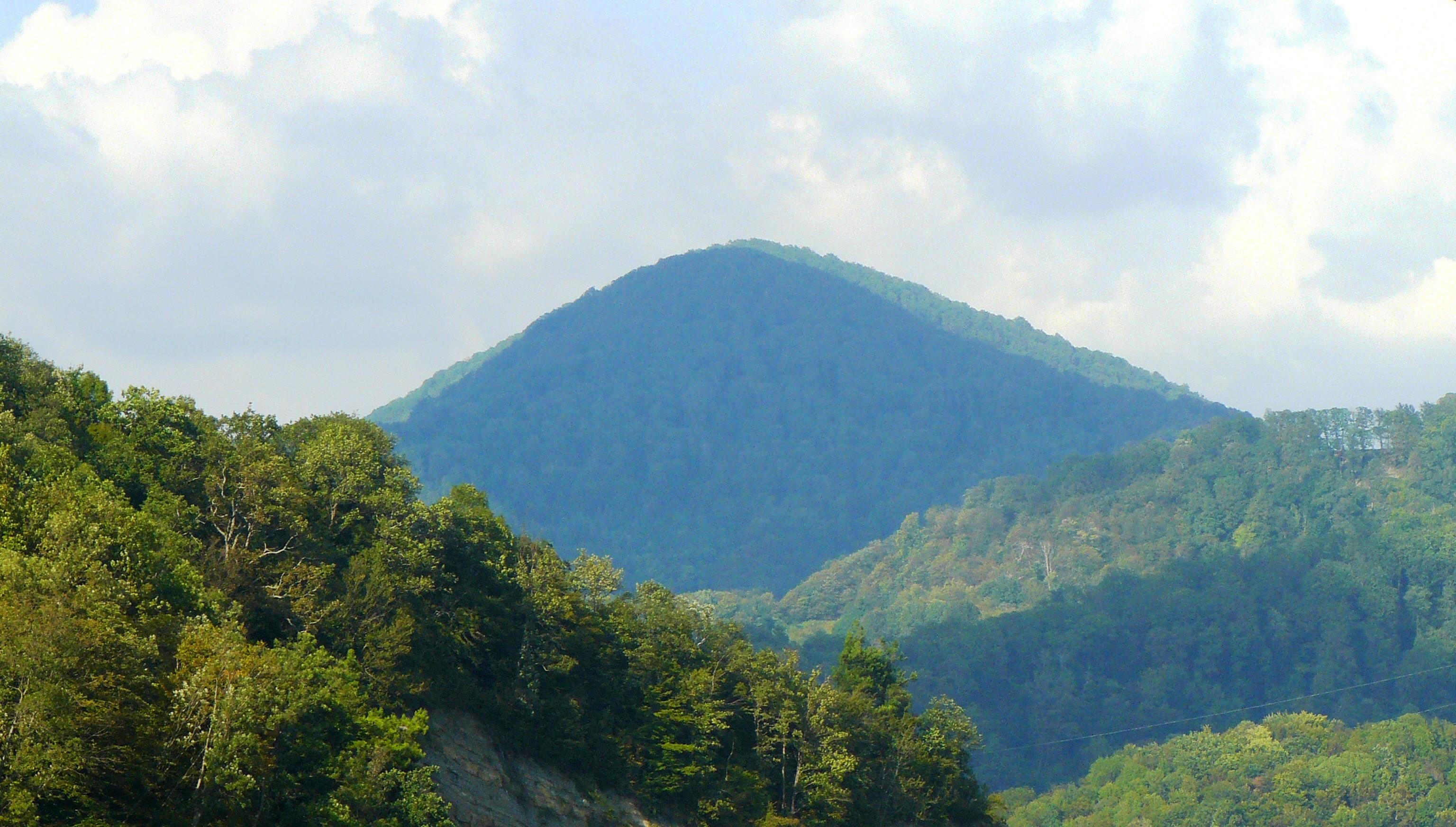 Гора Успенка, Сочи (фото: Вотъезде.org)