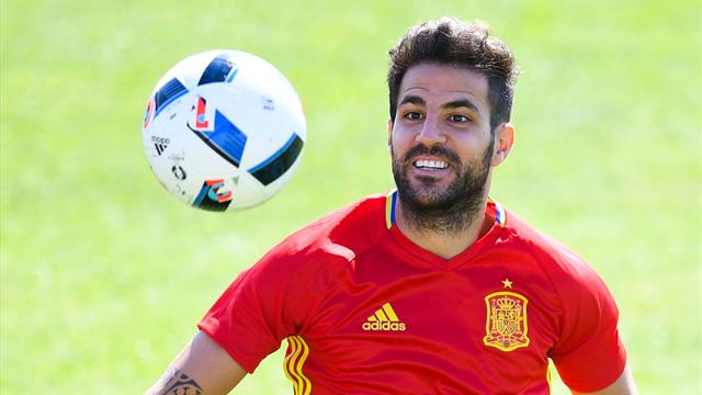 'Wait, maybe…' – Fabregas gets excited after Spain sacking