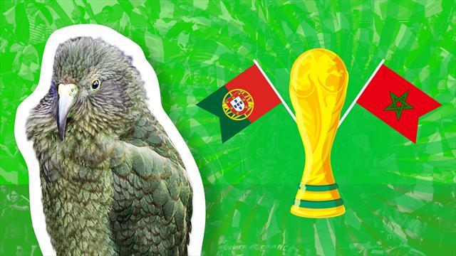 Le prono de Newton : entre le Portugal et le Maroc, qui décrochera sa première victoire ?